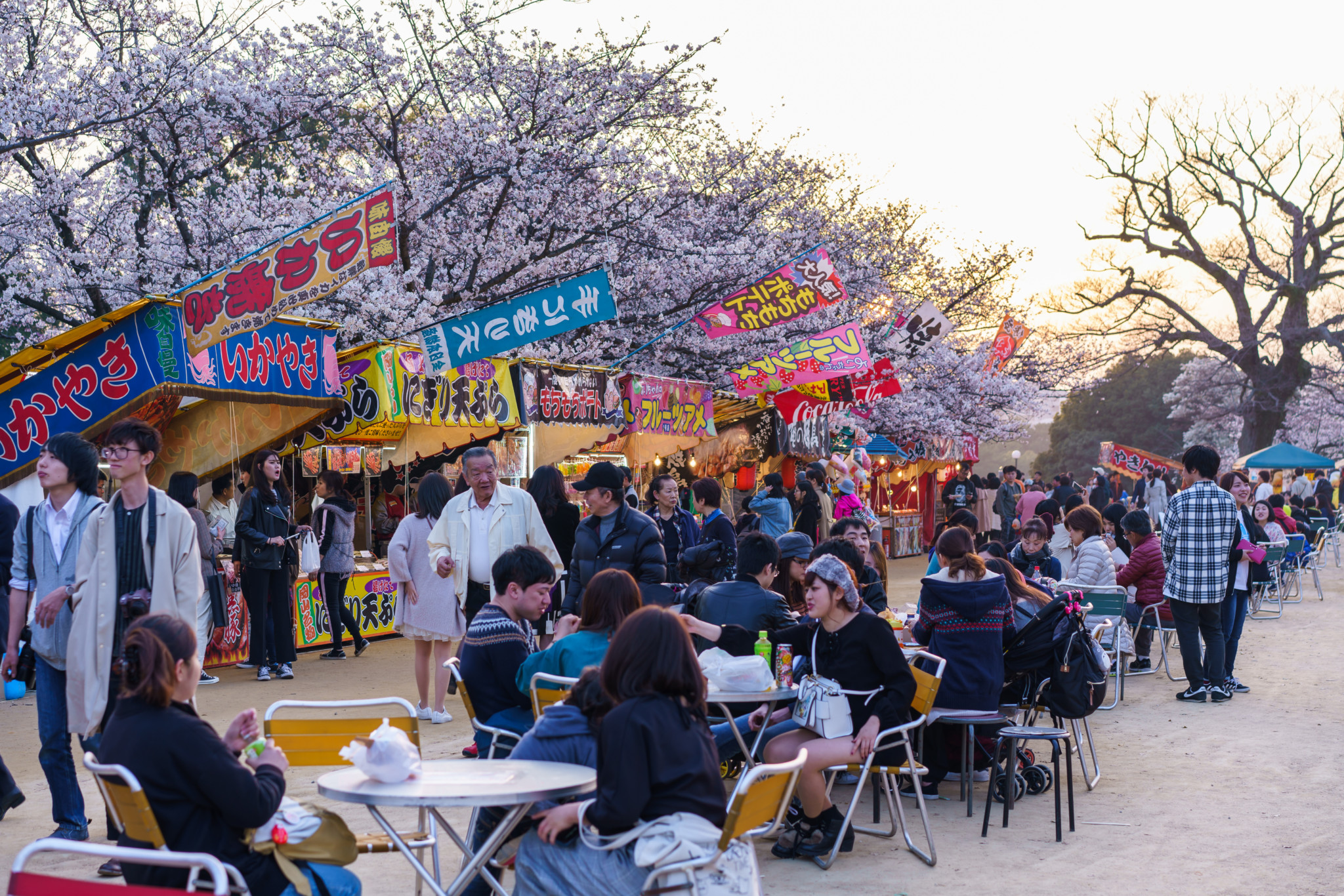 舞鶴公園西廣場