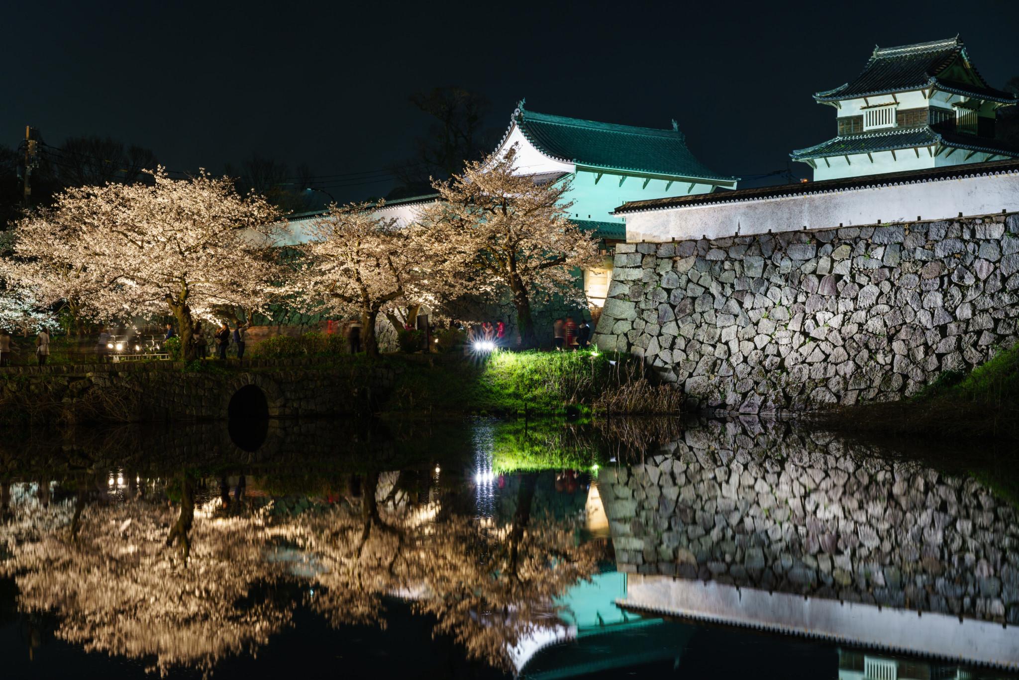福岡城潮見櫓 夜櫻